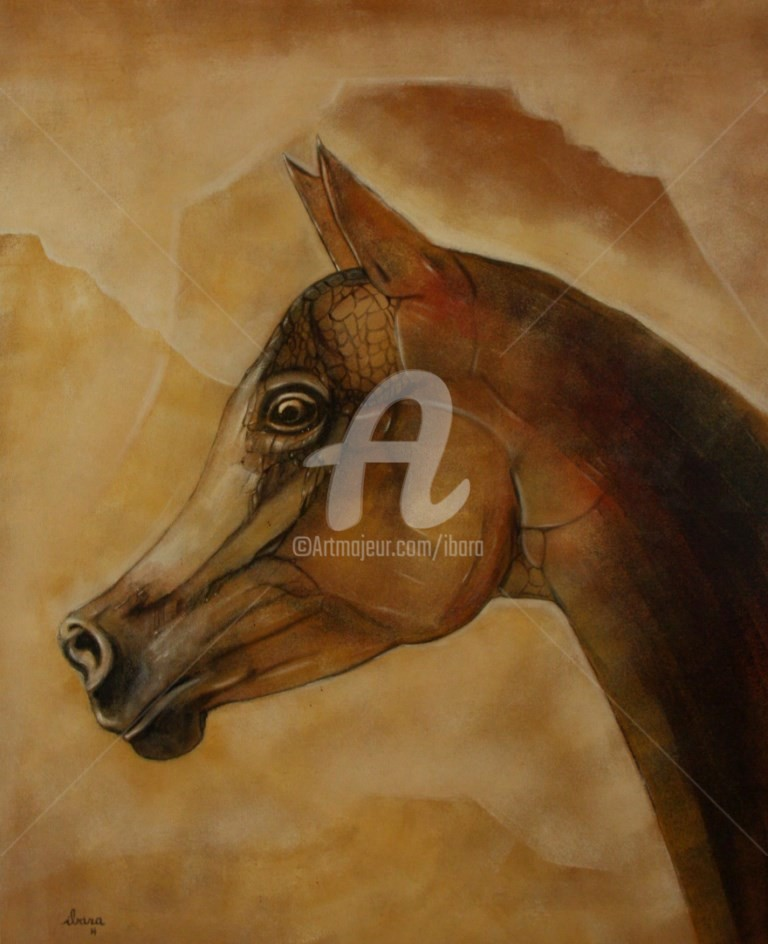 Henri Ibara - Tête de cheval arabe