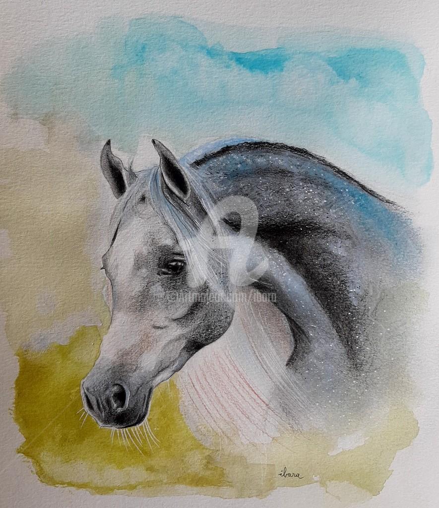 Henri Ibara - Tête de cheval arabe N°2
